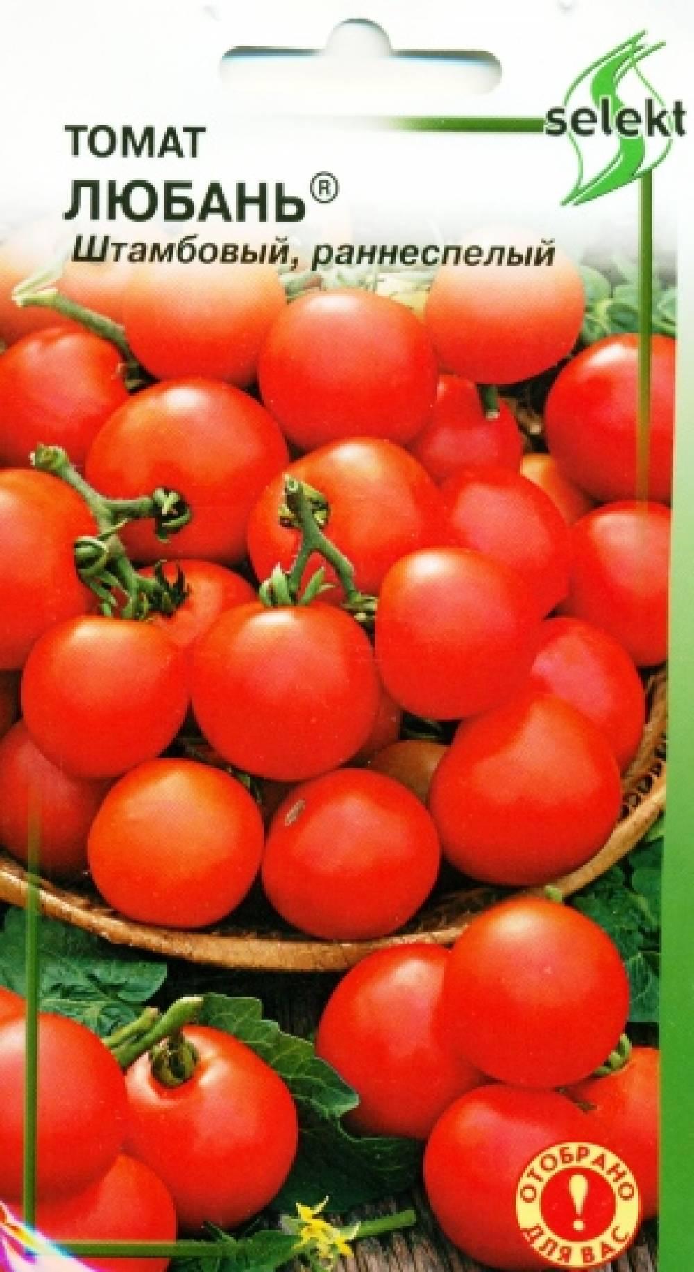 вас томат любань отзывы фото получаю много