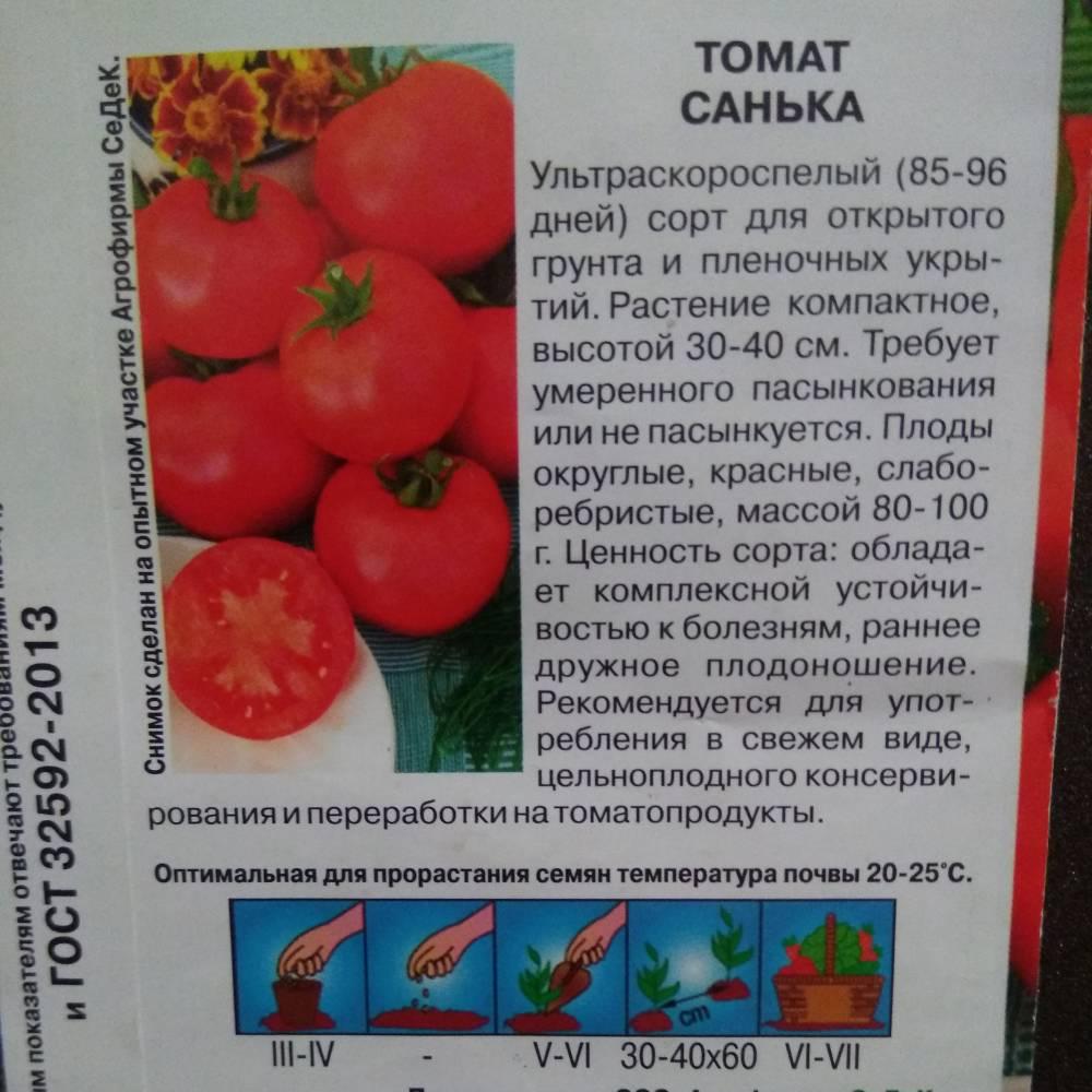 Сорт томата санька фото и описание пришлете