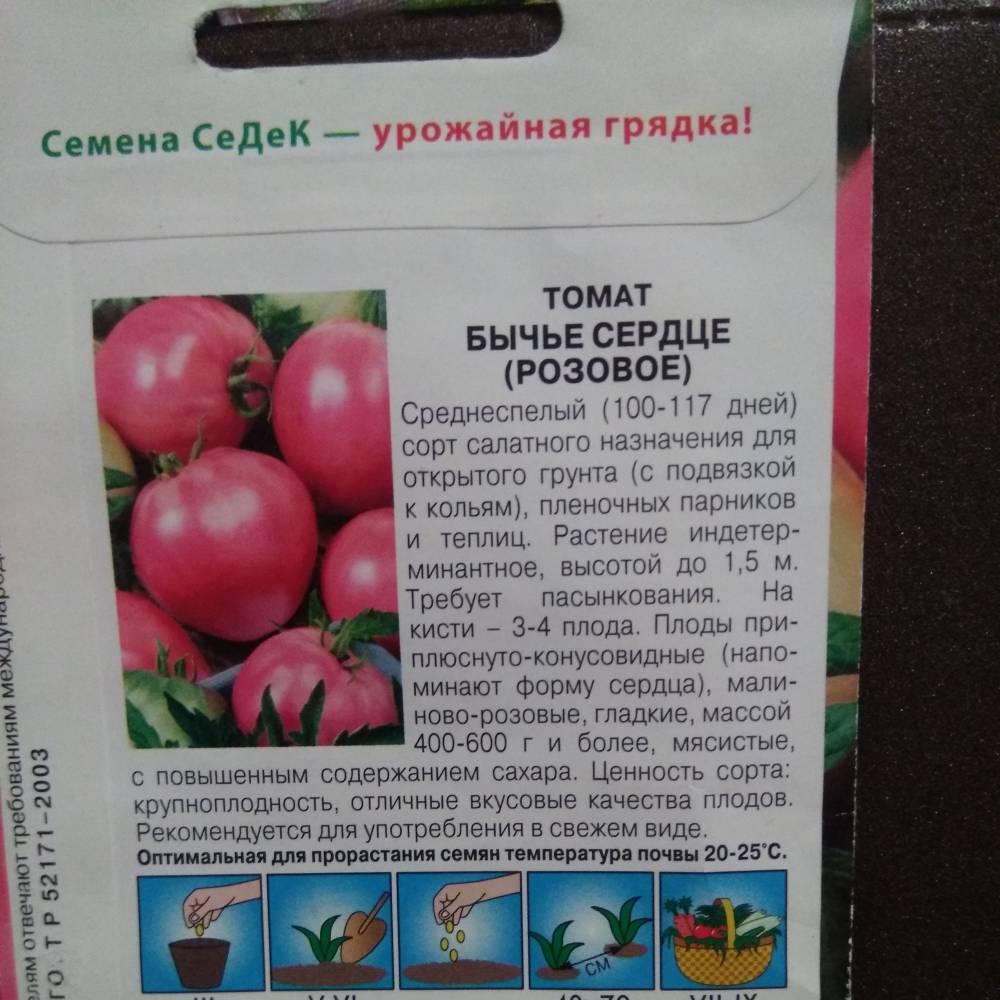 помидоры бычье сердце описание сорта фото невероятные удивительные картинки